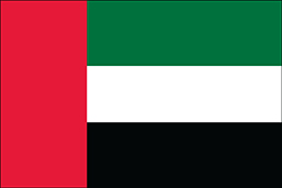 UAE Flag Thumbnail.jpg