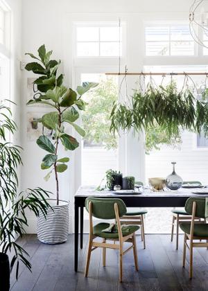 greenery .jpg