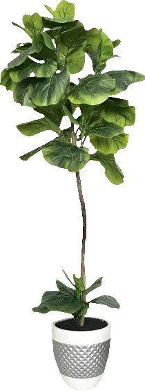 wayfair Fiddle-Leaf+Fig+Floor+Palm+Tree+in+Pot.jpg