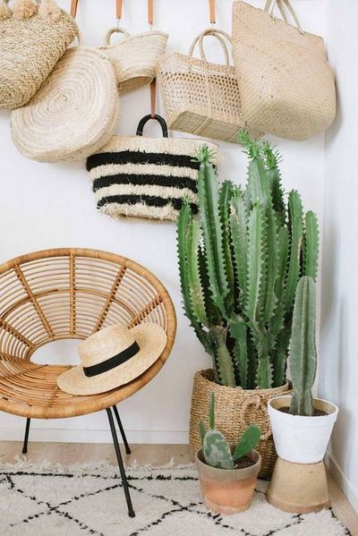 cacti and bags.jpg