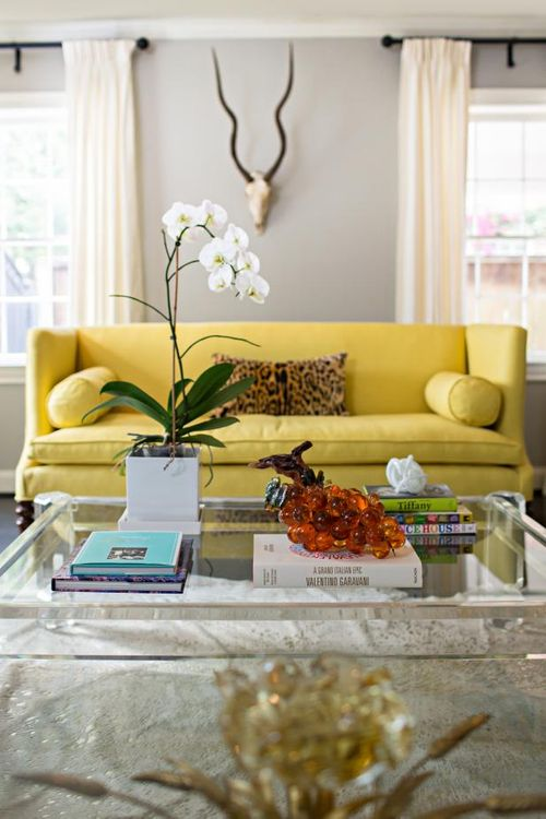 yellow couch and leopard print pillow.jpg