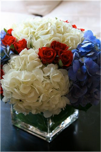 Simple Red White and Blue Arrangement