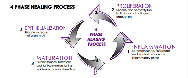 Scar Healing Cycle Graphic.png
