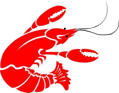 crawfish-logo-high[1].jpg