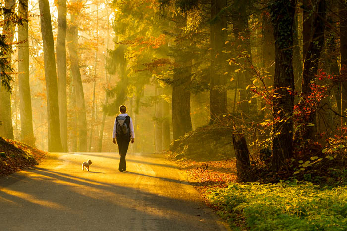 walking-as-meditation.jpg