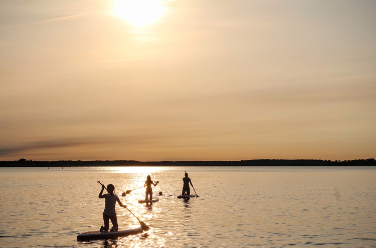 stand-up-paddle-1662068_1920.jpg