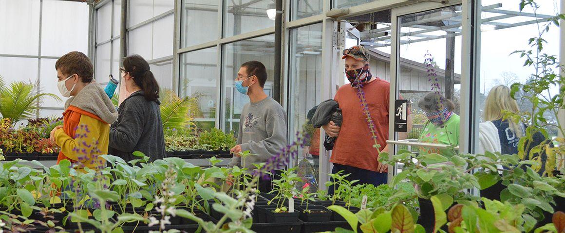 AS_greenhouse07.jpg
