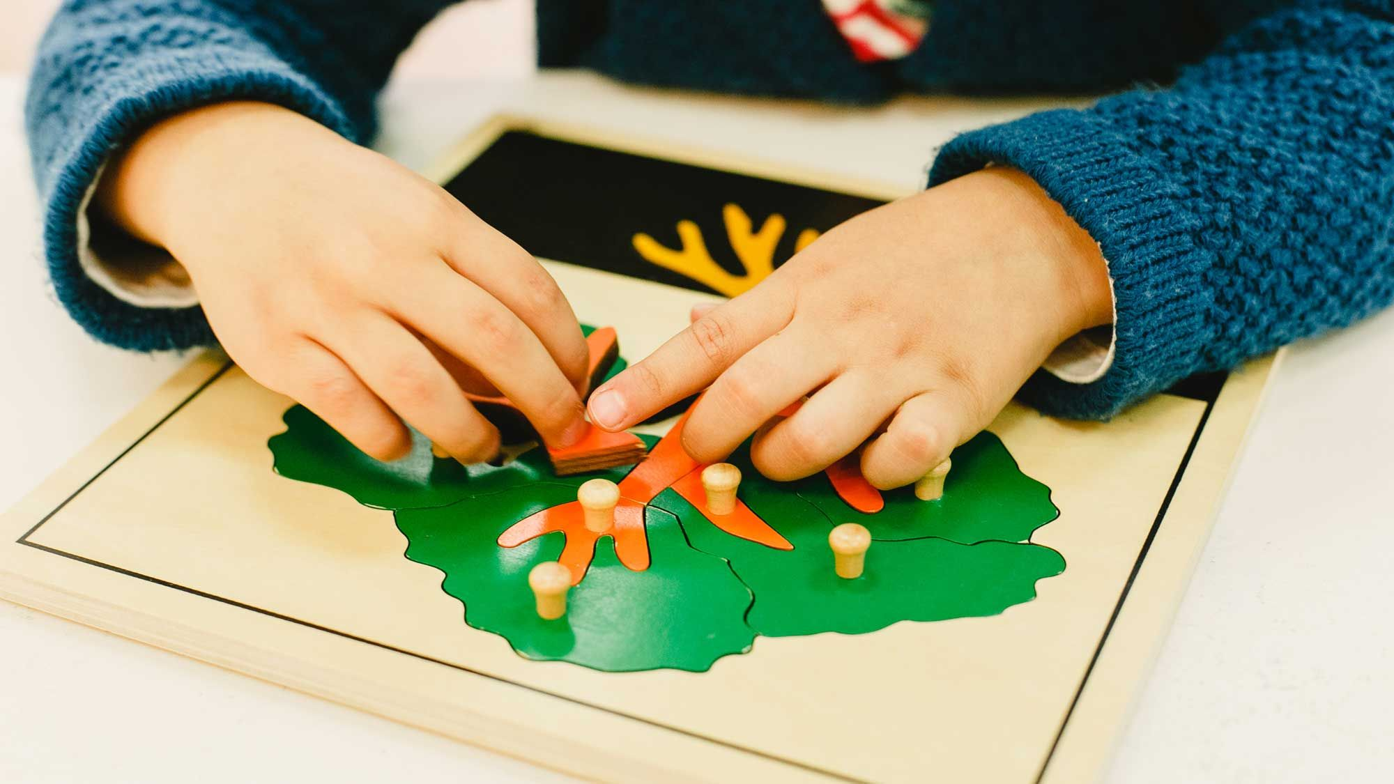 Leander Montessori Preschool