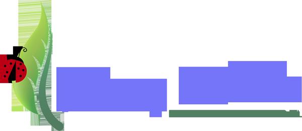 Young Minds Montessori Preschool