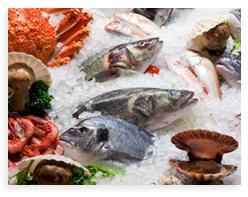fresh-seafood.jpg