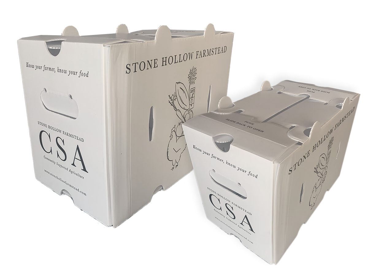 3/4 Bushel Corrugated  Plastic Crop Box