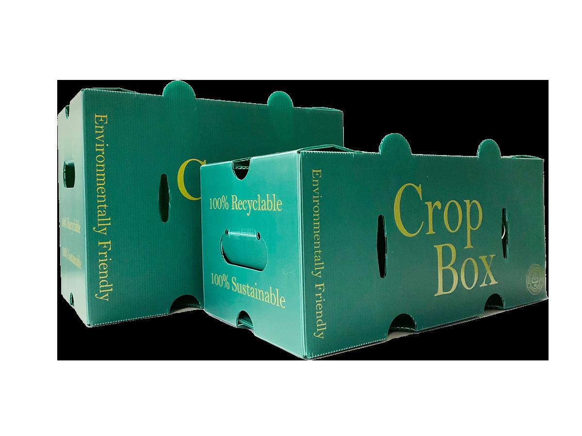 3/4 Bushel Corrugated  Plastic Crop Boxes