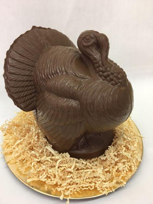 Turkey Large.jpg