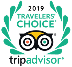 logo-2019-traveler-choice.png