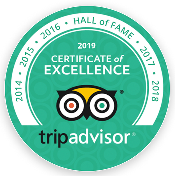 2019-certificate-of-excellence.png
