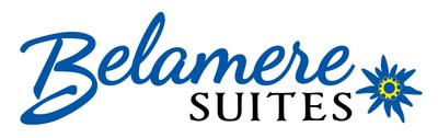 logo color background