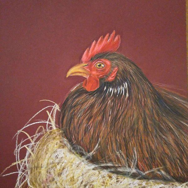 Local Austin artist Nesting Chicken by Connor Teseny.jpg