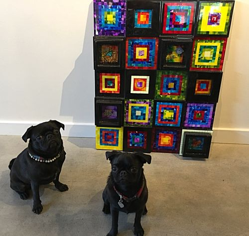 Local Art Gallery Pugs Donate to APA