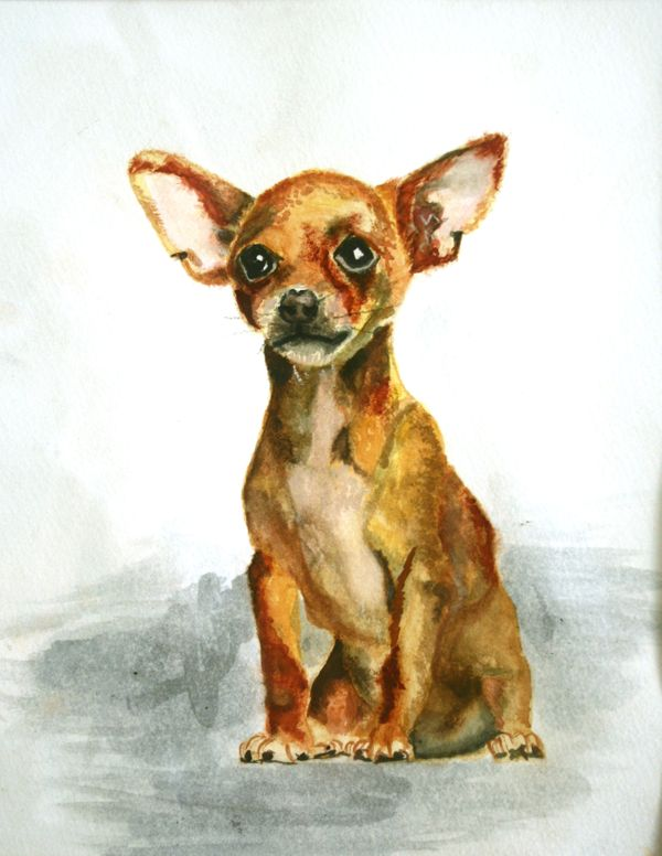 Local Austin artist Pup by Darien Nuckols.jpg