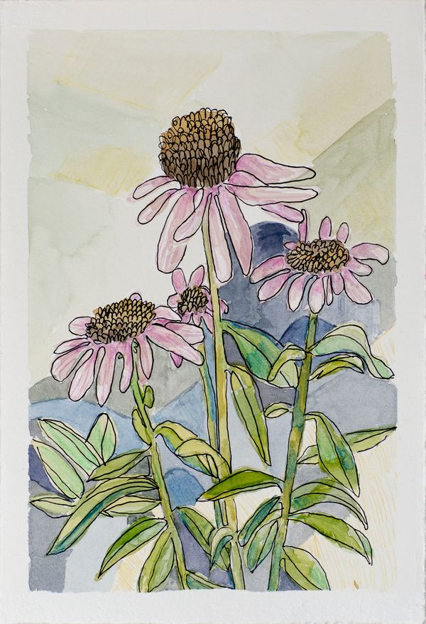 Local Austin artist Pink Echineacea Flowers by Kerry Huggins.jpg