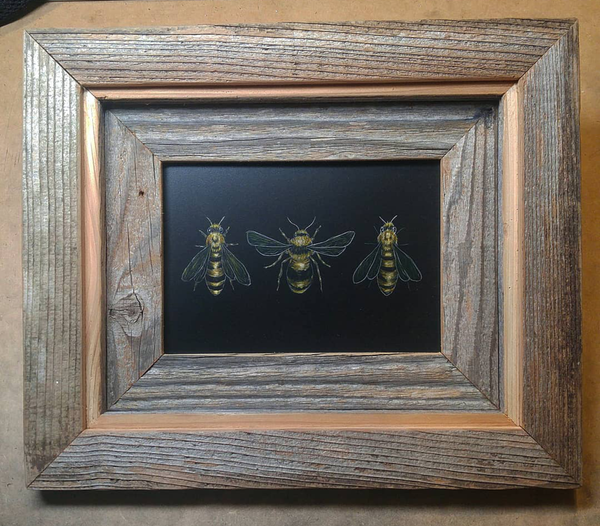 Connor Teseny_Bees Bees Bees_Austin Artist.png