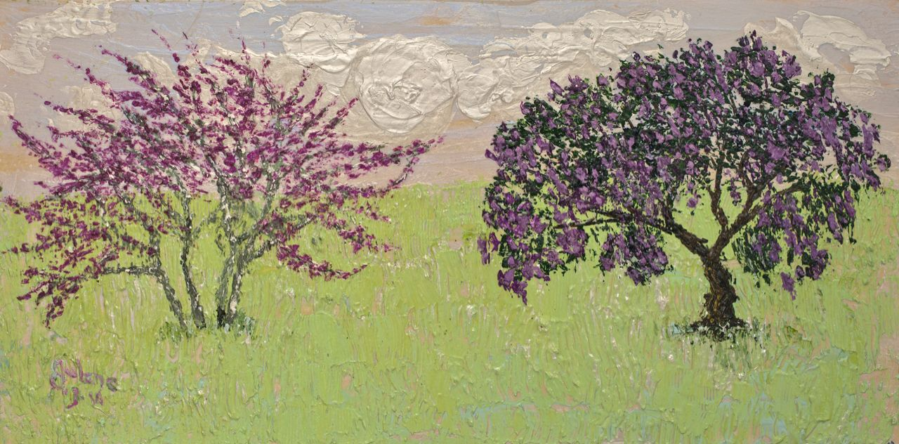 Redbud and Laurel Iridescent .jpg