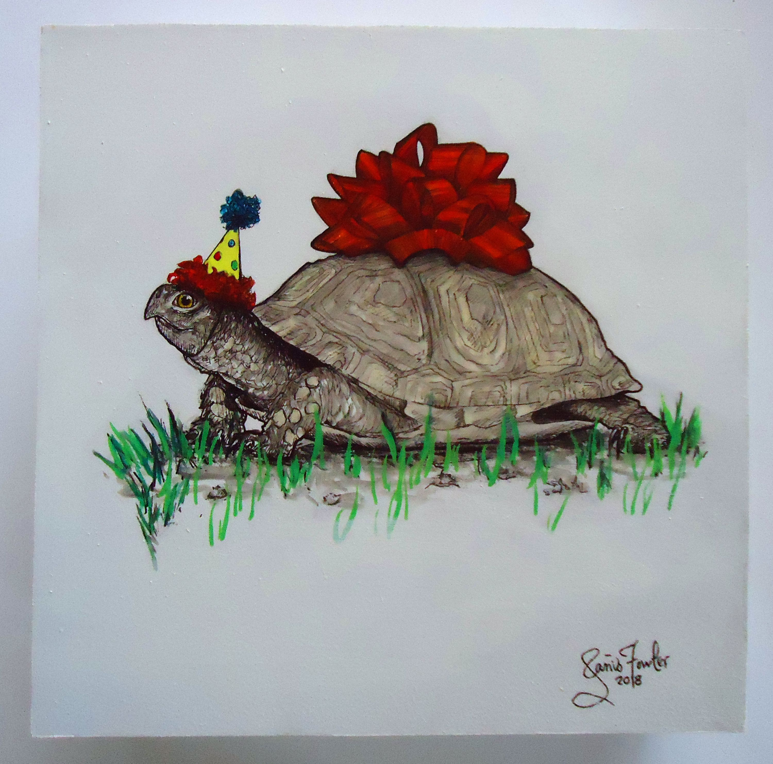 Janis_Fowler_Party Turtle_Austin_Art.jpg