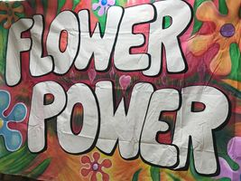 Flower Power 10 x 12.JPG