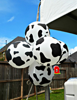 balloon designs cow.jpg