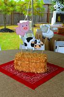 Farm Party2.jpg