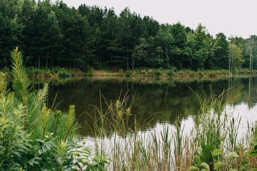 Sloan Lake 1.jpg