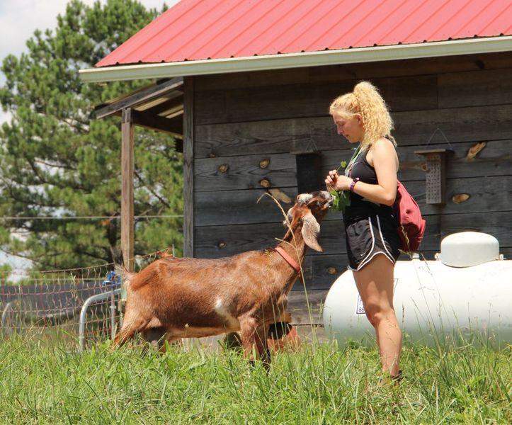 farm visit 1.JPG