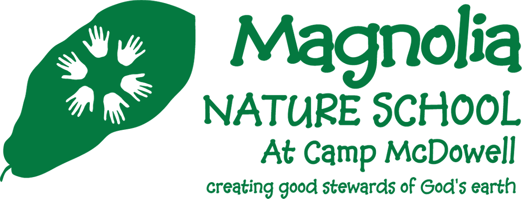 Magnolia Nature School logo camp green.png