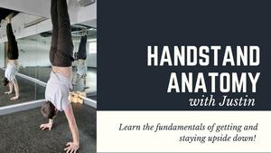 handstand anatomy