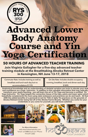 Advanced Lower Body Anatomy & Yin Yoga Certification at Alnoba