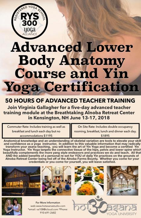 Advanced Lower Body Anatomy & Yin Yoga Certification at Alnoba