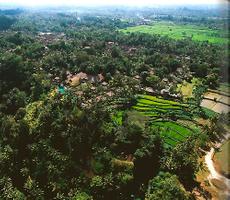 Tramex Bali 02