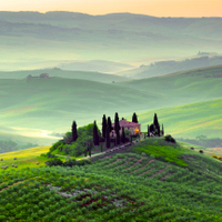 Tramex Italy 03