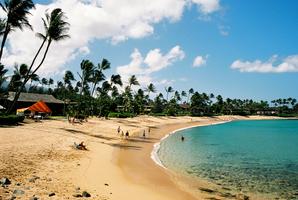 Tramex hawaii 03