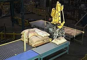 Bag-Palletizing-Equipment.jpg