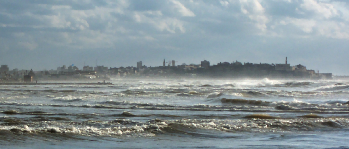 Ucluelet-BC-Storm-Wathcing.jpg
