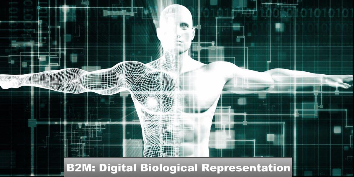 B2M_Digital_Biological_Representation_1200x600.jpg