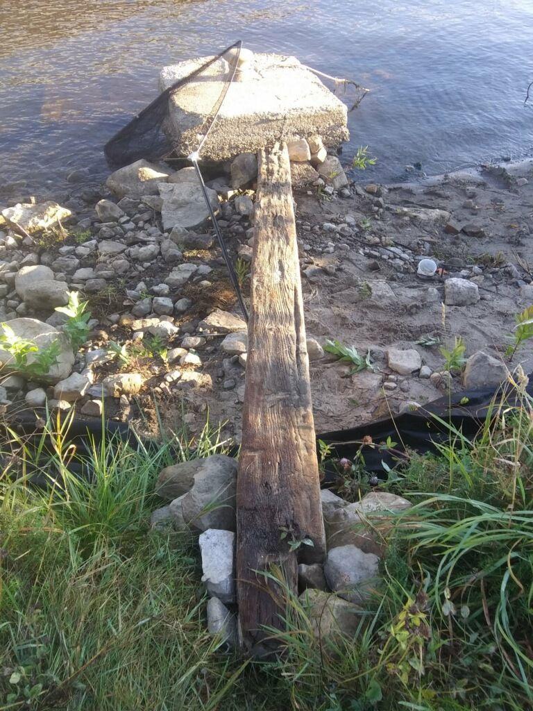 plank of death.jpg