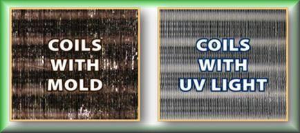 uv lights 2.jpg