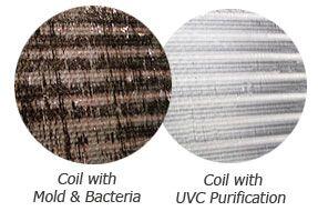 coil-uv-light-purification.jpg