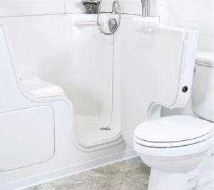 walk-in tub next to toilet.jpg