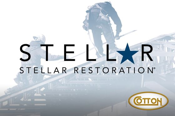 Stellar-WEB-Thumbnail-HLDS.jpg